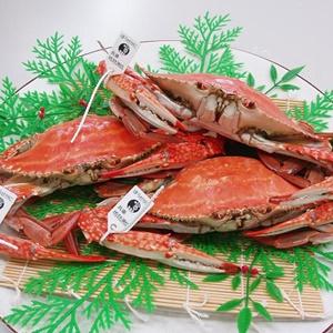 青空レストランで坊勢島のぼうぜがにの満点レシピ!ケジャンには2種類の味がある?